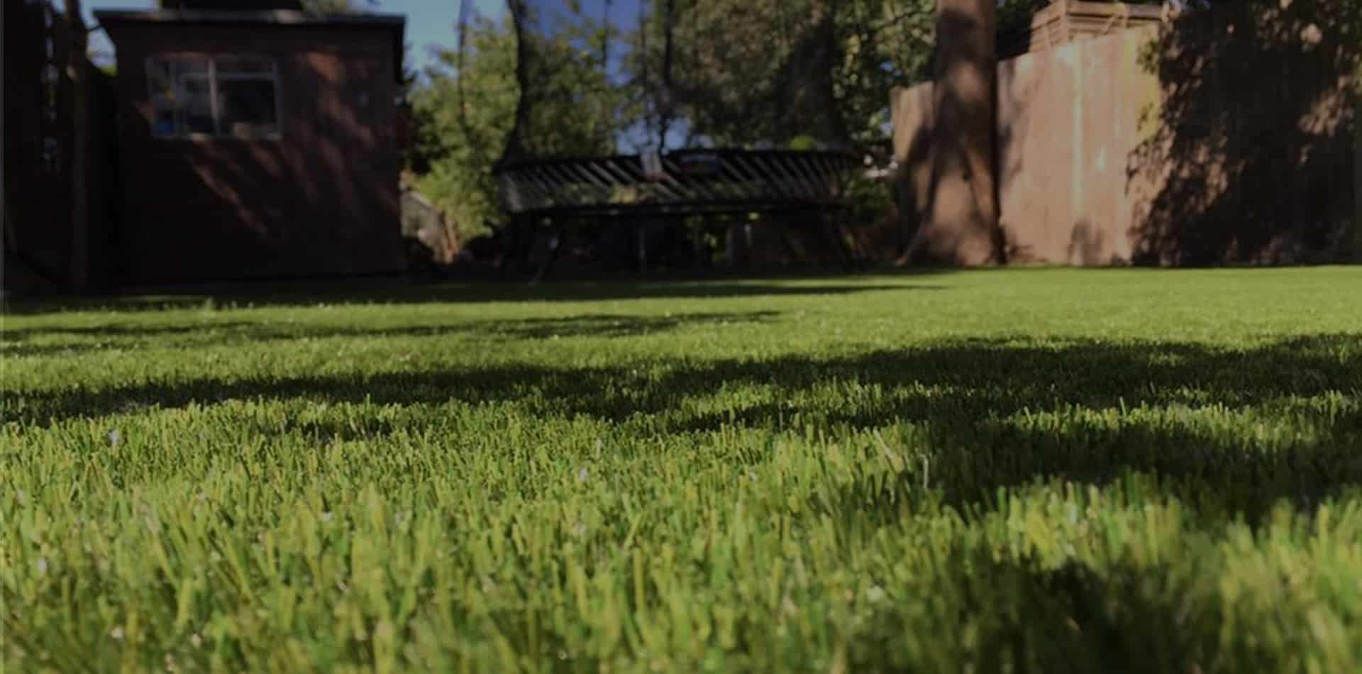 Why Laying Artificial Grass Can Help Your Allergies